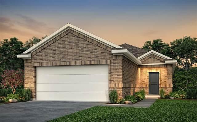 25561 Northpark Spruce Drive, Porter, TX 77365 (MLS #45892981) :: Homemax Properties