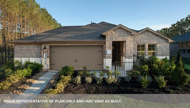 3534 Park Vista Drive, Missouri City, TX 77459 (MLS #45963441) :: The Wendy Sherman Team