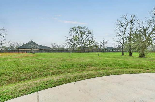 3402 Westhaven Ct Court, Fulshear, TX 77441 (MLS #45977854) :: The Freund Group