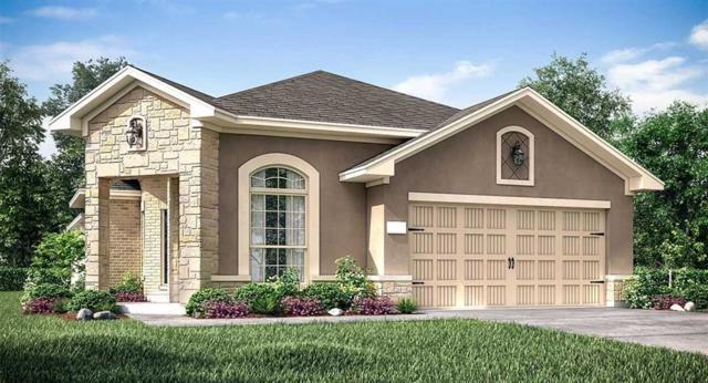 18703 June Grove Lane, Cypress, TX 77429 (MLS #46023043) :: KJ Realty Group