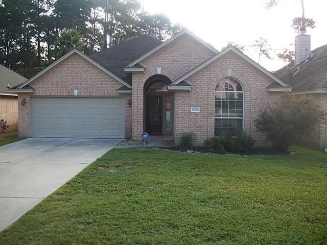 10466 Parkside Dr Drive, Willis, TX 77318 (MLS #46057301) :: Johnson Elite Group