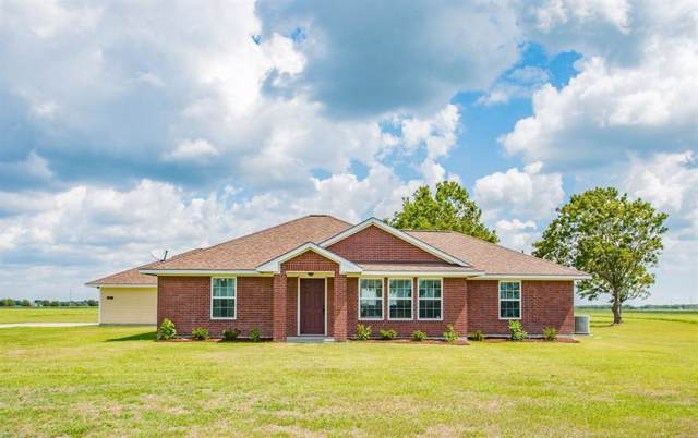 1437 Pinto Court, Angleton, TX 77515 (MLS #46059775) :: Connect Realty