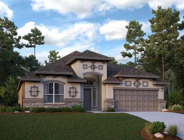 4419 Woodridge Drive, Manvel, TX 77578 (MLS #46070296) :: Caskey Realty
