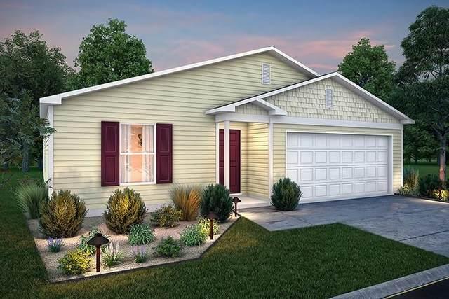 236 Bluebonnet, Livingston, TX 77351 (MLS #46155216) :: Bray Real Estate Group