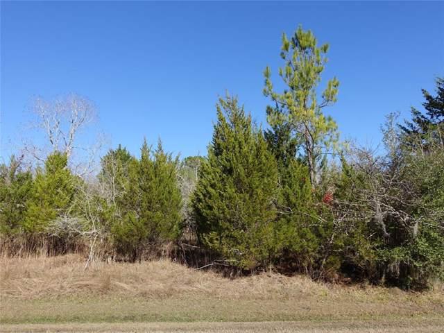 00 N Forest Cove Loop, Coldspring, TX 77331 (MLS #46182496) :: Texas Home Shop Realty