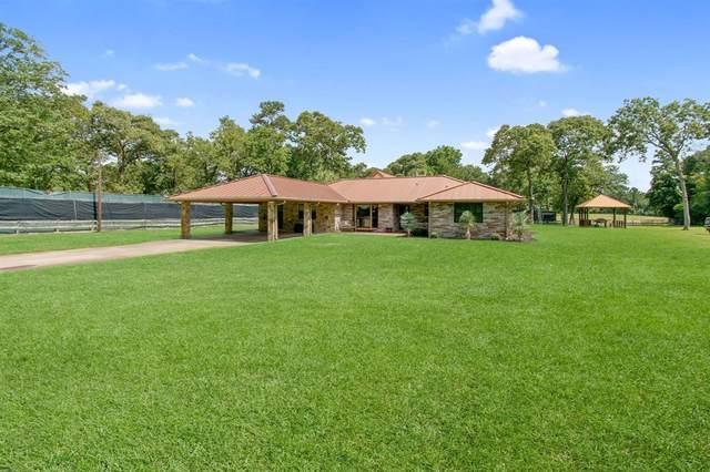 8725 Fm 1276, Livingston, TX 77351 (MLS #4619877) :: Ellison Real Estate Team