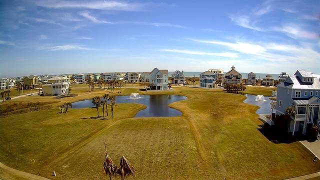 25607 Spotted Sandpiper Drive, Galveston, TX 77554 (MLS #46261524) :: The Bly Team