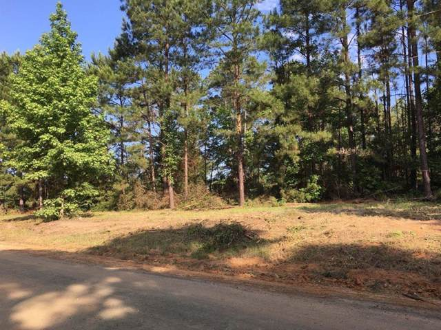 2400 County Road 2800 Road, Colmesneil, TX 75938 (MLS #46267334) :: Texas Home Shop Realty