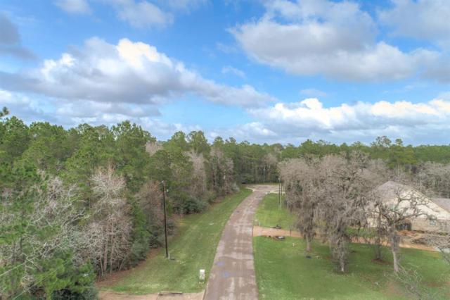 27411 Winding Creek, Magnolia, TX 77355 (MLS #46290358) :: Grayson-Patton Team