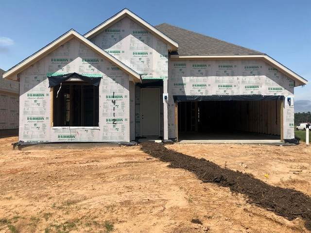 14112 Emory Peak Court, Conroe, TX 77384 (MLS #46311651) :: The Bly Team