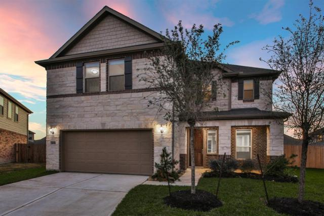 14112 Wedgewood Lakes Court, Pearland, TX 77584 (MLS #46395303) :: Christy Buck Team
