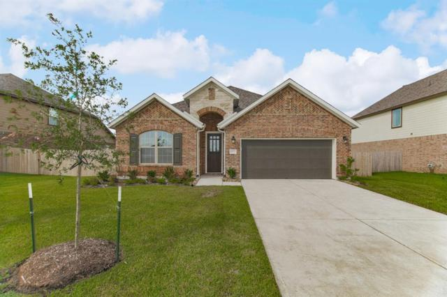 8923 Japonica Drive, Rosenberg, TX 77469 (MLS #46424315) :: JL Realty Team at Coldwell Banker, United