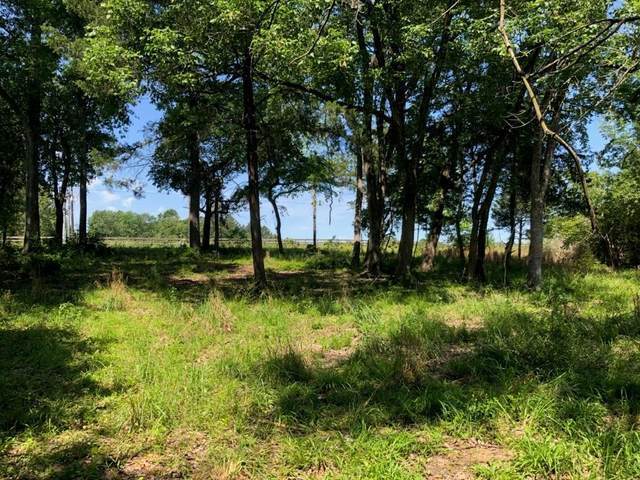 219 S Pine Lake Drive, Conroe, TX 77356 (MLS #46439989) :: Green Residential