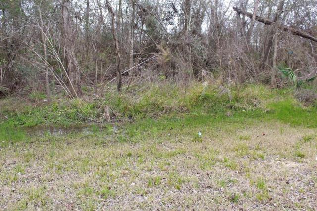 LOT 34 Highland Shores Road, Highlands, TX 77562 (MLS #46487370) :: The Sansone Group