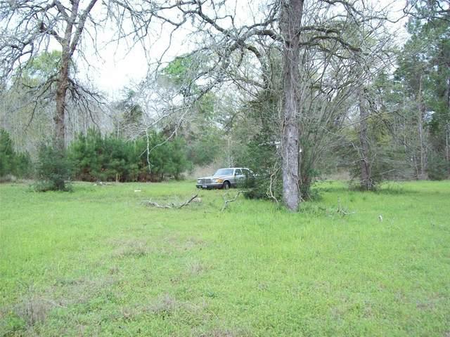 16924 Azalea Lane, Plantersville, TX 77363 (MLS #46515943) :: Green Residential