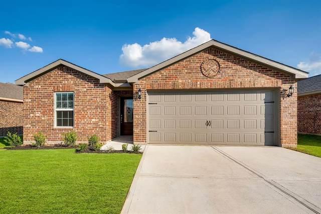 21323 Rachel Manor Drive, Hockley, TX 77447 (MLS #46526710) :: Michele Harmon Team