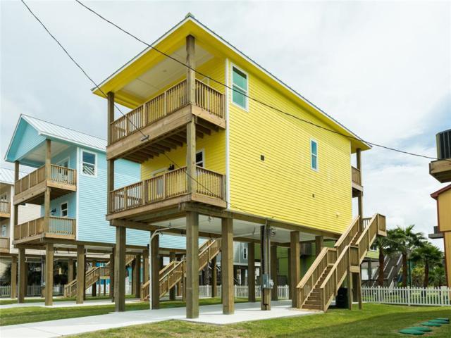 11225 Schwartz Drive, Galveston, TX 77554 (MLS #46555355) :: Texas Home Shop Realty