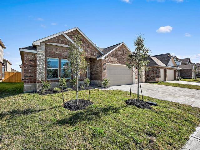 34 Alyssa Palms Drive, Manvel, TX 77578 (MLS #46559350) :: Giorgi Real Estate Group
