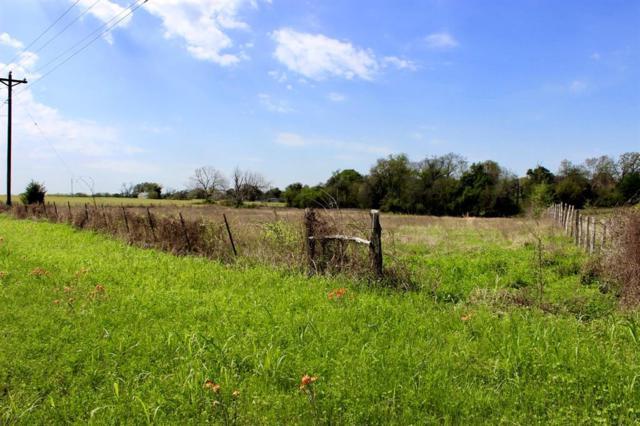 TBD Fm 390 N, Brenham, TX 77833 (MLS #46591663) :: Green Residential