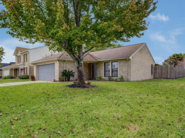 9907 Brookside Drive, La Porte, TX 77571 (MLS #46598726) :: The Queen Team