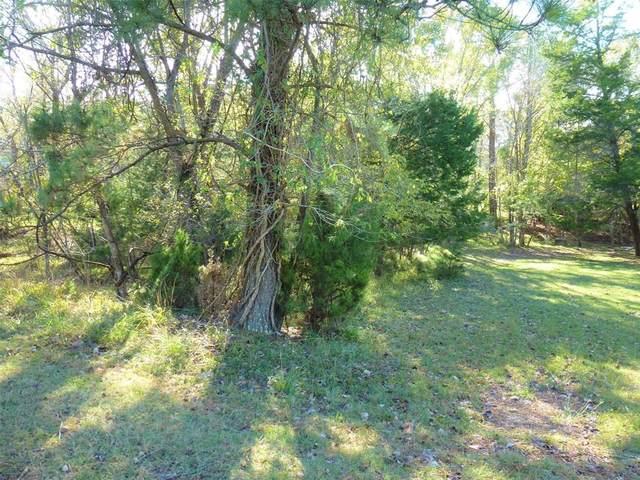 11 & 15 N Forest Cove Loop, Coldspring, TX 77331 (MLS #46620064) :: My BCS Home Real Estate Group