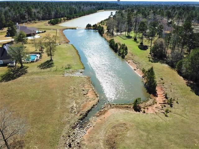 11256 Blue Grass Way, Conroe, TX 77304 (MLS #46632689) :: TEXdot Realtors, Inc.