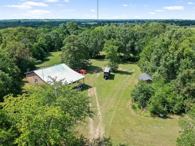 4731 Scenic View Drive NE, Anderson, TX 77830 (MLS #46657575) :: Ellison Real Estate Team