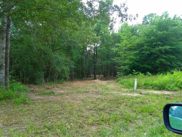 000 Hidden Cove Road, Point Blank, TX 77364 (MLS #46718963) :: Texas Home Shop Realty