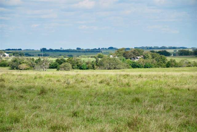 Tract 2 County Road 291, Shiner, TX 77984 (MLS #46775326) :: The Queen Team