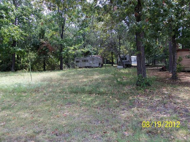 248 Noel Drive, Onalaska, TX 77360 (MLS #46796604) :: Texas Home Shop Realty