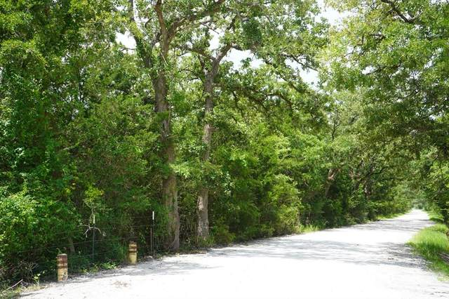 0006 County Road 190, Anderson, TX 77830 (MLS #46842484) :: Lerner Realty Solutions