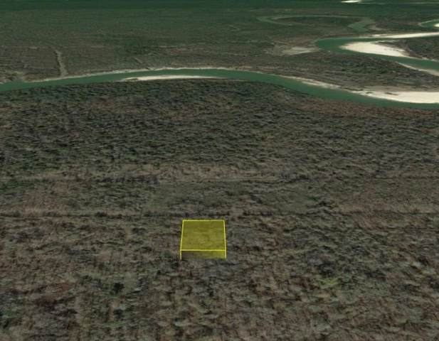 0 County Road 2519, Liberty, TX 77575 (MLS #46843525) :: The Freund Group