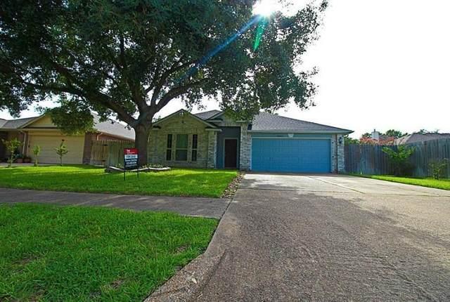 18223 Lundar Lane, Tomball, TX 77377 (MLS #46885859) :: Ellison Real Estate Team