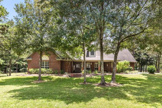 1331 Chocolate Bayou Drive, Alvin, TX 77511 (MLS #46906525) :: The Sold By Valdez Team