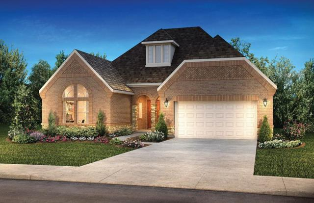 10522 Lantana Pass, Missouri City, TX 77459 (MLS #46932799) :: The Home Branch