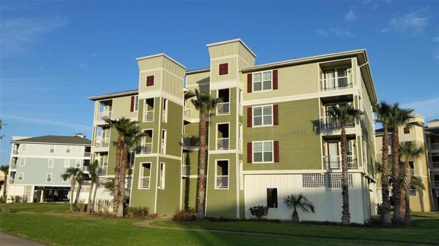 26441 Cat Tail Drive #202, Galveston, TX 77554 (MLS #46934309) :: Team Parodi at Realty Associates