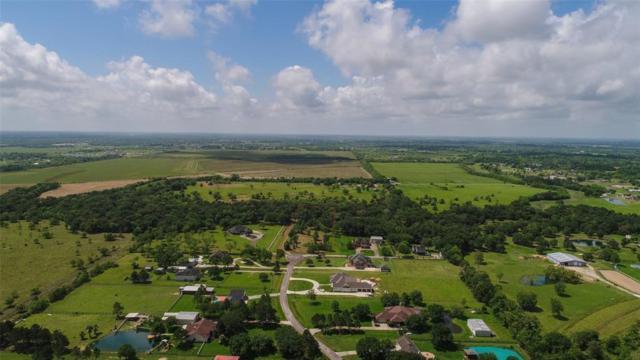 428 Bayou End Circle, Alvin, TX 77511 (MLS #46969898) :: Texas Home Shop Realty
