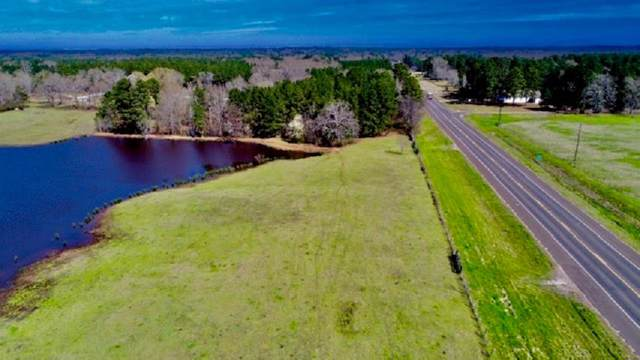 TBD Highway 135, Troup, TX 75789 (MLS #47032478) :: The Bly Team