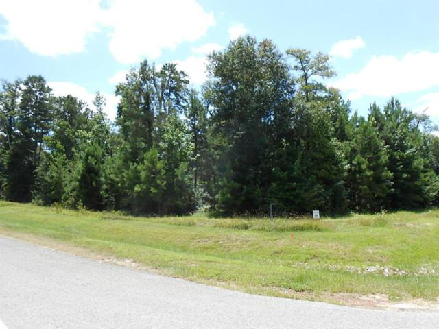 312 Ridgelake Scenic Drive, Montgomery, TX 77316 (MLS #47064797) :: Fairwater Westmont Real Estate