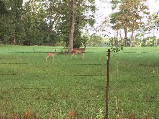TBD Ridge View, Huntsville, TX 77340 (MLS #47232332) :: CORE Realty