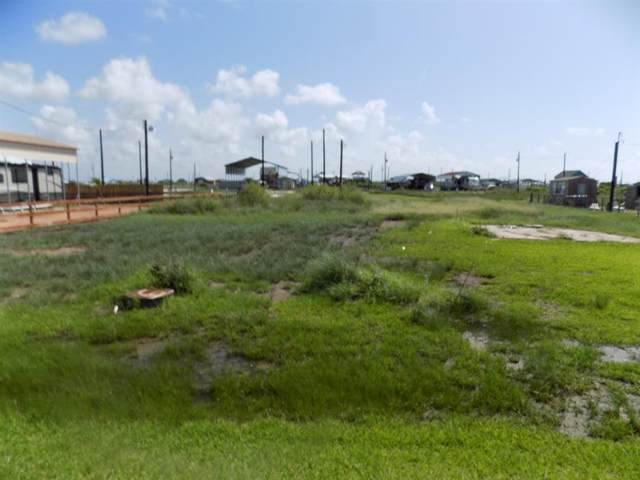 334 Blue Water Boulevard, Sargent, TX 77414 (MLS #47246806) :: My BCS Home Real Estate Group