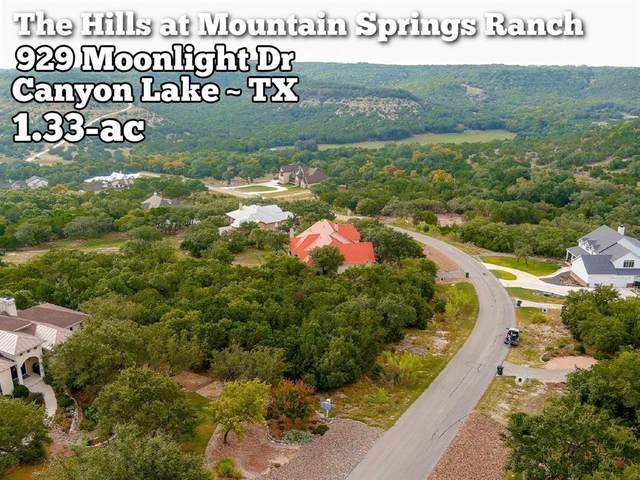 929 Moonlight Drive, Canyon Lake, TX 78133 (MLS #47317890) :: Giorgi Real Estate Group