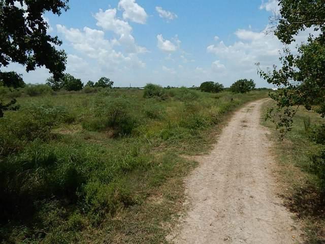 000 Beard Road, Needville, TX 77461 (MLS #47359866) :: Guevara Backman