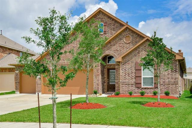 9611 Clear Diamond Drive, Rosharon, TX 77583 (MLS #47371698) :: JL Realty Team at Coldwell Banker, United