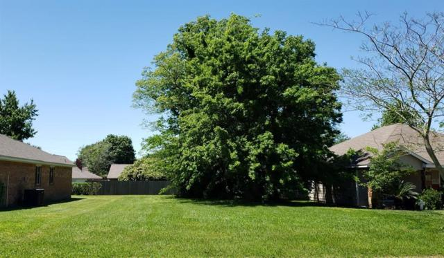 7074 Gentle Breeze Drive, Willis, TX 77318 (MLS #47421134) :: Giorgi Real Estate Group