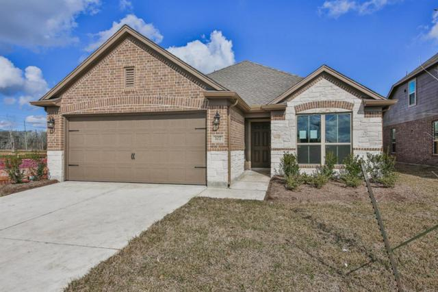 107 Bower Bloom Drive, Rosharon, TX 77583 (MLS #47437810) :: Texas Home Shop Realty