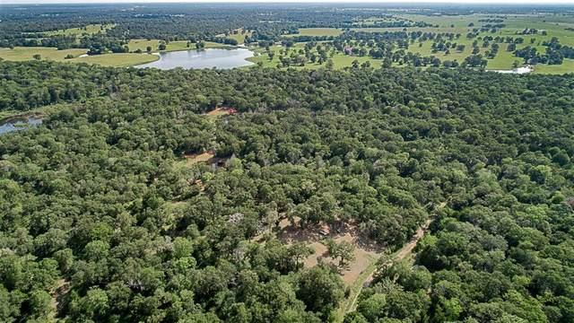 TBD Old Bundick Road, Hearne, TX 77859 (MLS #47622910) :: The Heyl Group at Keller Williams