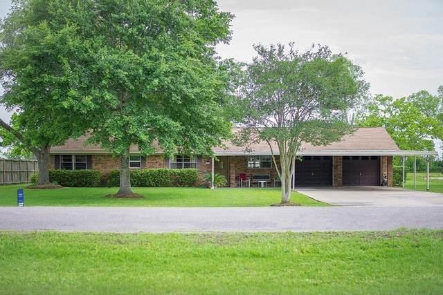 7539 Jenkins Road SE, Pearland, TX 77584 (MLS #47624356) :: Guevara Backman