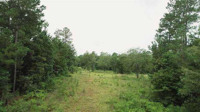141 Remington Road, Huntsville, TX 77340 (MLS #47646696) :: The SOLD by George Team
