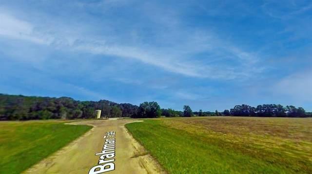 Lot 48 Brahman Trail, Angleton, TX 77515 (MLS #47806059) :: The Freund Group